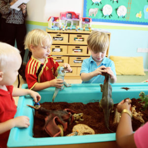 ISO certified nurseries in Dubai